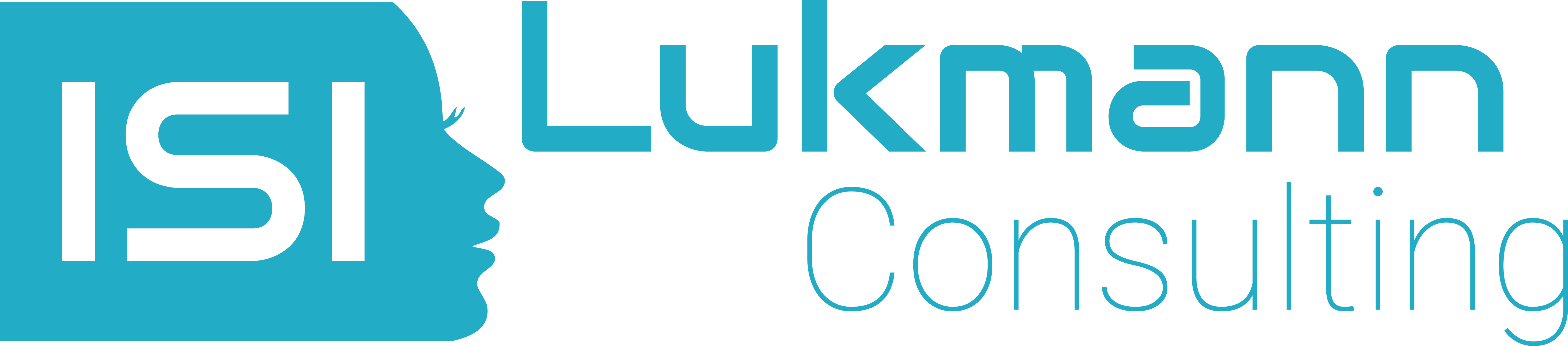 Lukmann Consulting GmbH